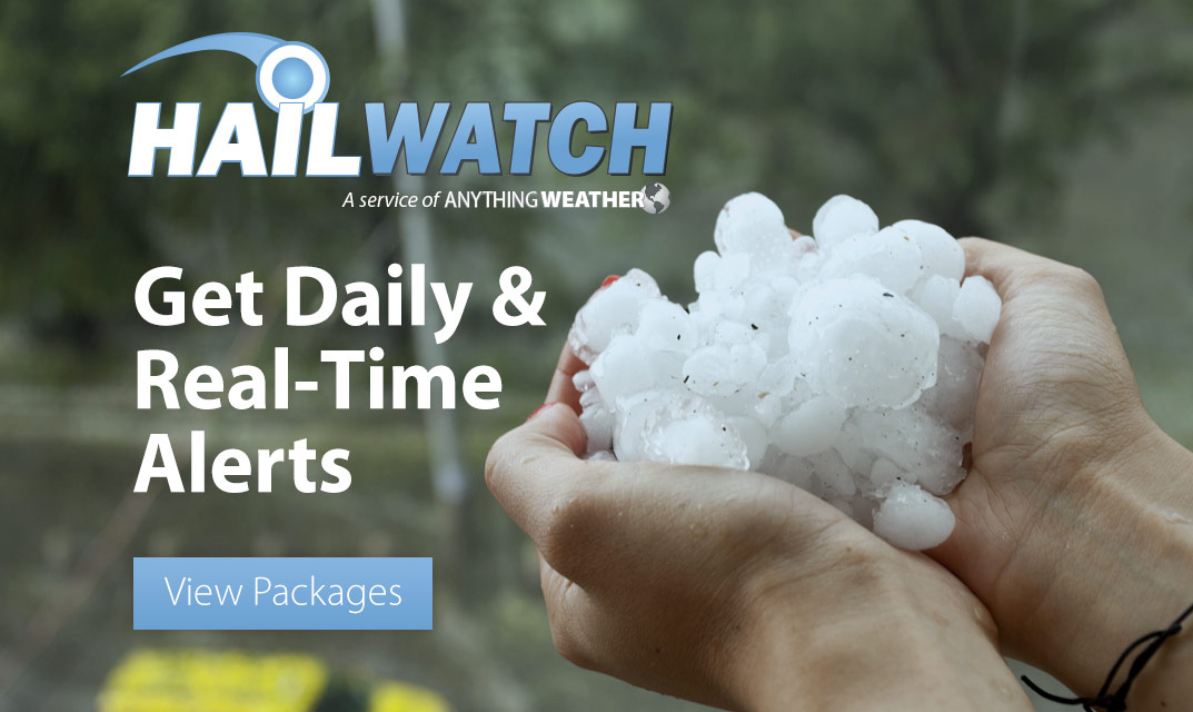 HailWATCH Daily and Real-Time Alerting Services